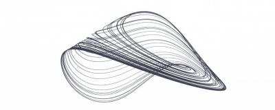 Strange Attractors                                 & Complex Systems